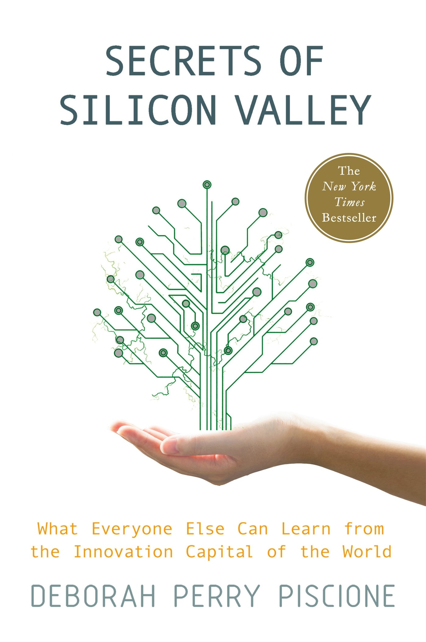 Secrets of Silicon Valley: What Everyone Else Can Learn from the Innovation Capital of the World: Deborah Perry Piscione: 9781137279170: Amazon.com: Books