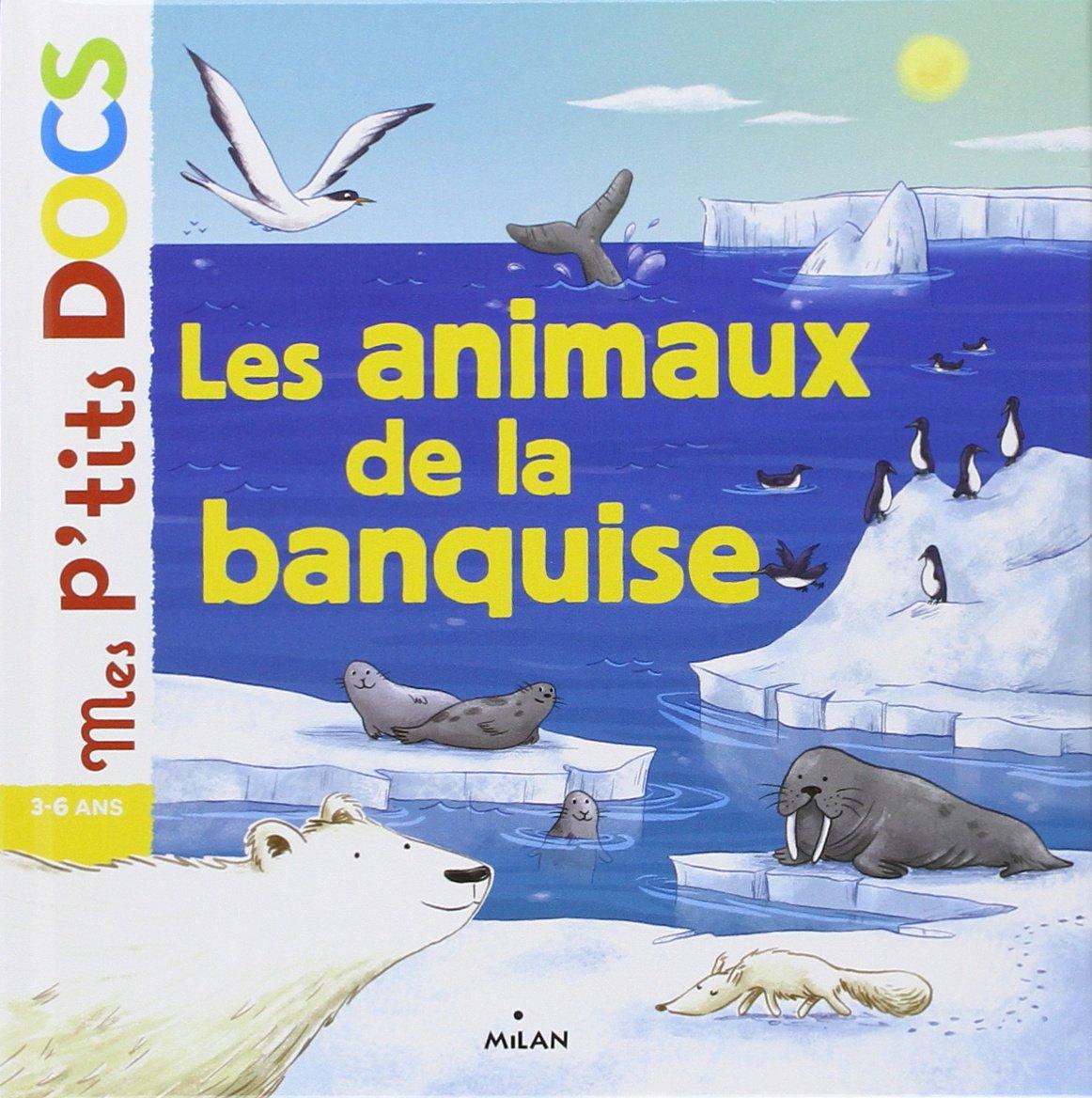 Préférence Amazon.fr - Les animaux de la banquise - Stéphanie Ledu, Delphine  SC53