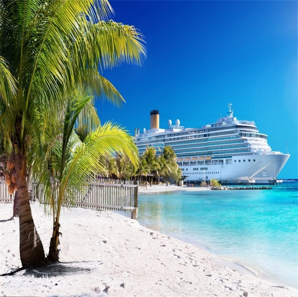 10x8ft 3D Cruise Ship Over Sea Background Summer Birthday Party Events Decoration Tropical Beach and Palm Tree Backdrop for Photography Vacation Holidays Photo Studio Props Vinyl Wallpaper