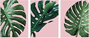 """TutuBeer Plant Wall Art Plant Tropical Leaves and Water at Pink Background Tropical Wall Decor Green Plant Art 12"""" x 16"""" x 3 Pieces Canvas Pictures Artwork Ready to Hang for Home Decor Wall Decor"""