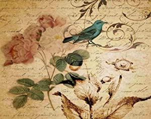 Qoalips Vintage Nouveau Victorian Paris Scripts French Bird Botanical Teal Romantic Diamond Painting Kits, Diamond Painting with Tools for Home Wall Decor Full Drill 16x20 Inch