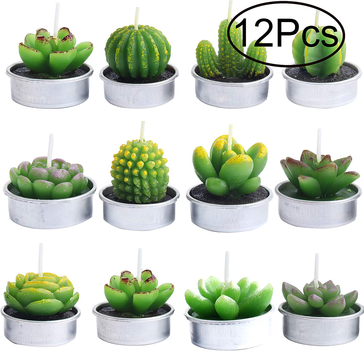 Outee Cactus Tealight Candles, 12 Pack Handmade Delicate Succulent Cactus Candles Flameless Aromatherapy 12 Designs for Birthday Party Wedding Spa Home Decoration