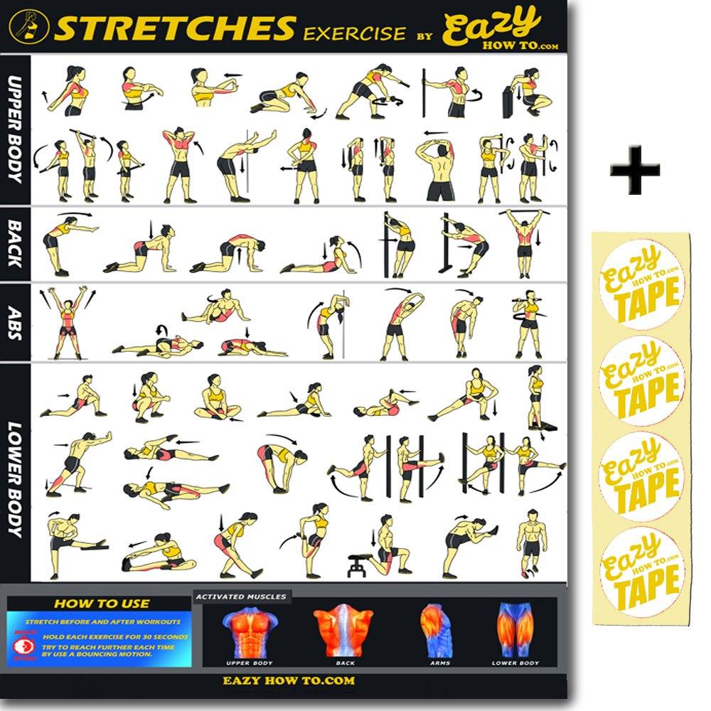 Eazy How To Stretch Banner Poster Exercise Workout BIG 28 X 20 Increase Flexibility , Loosen Muscle, Prevent Injury Home Gym Chart