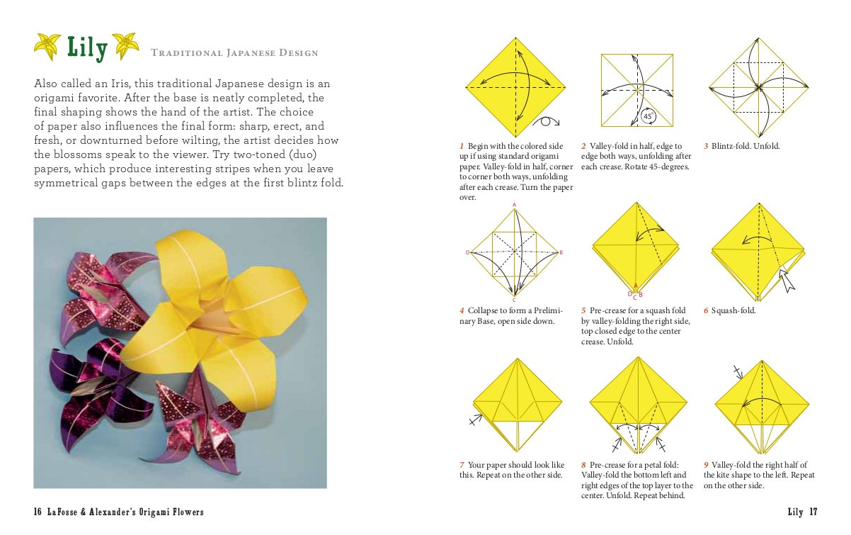 Lafosse And Alexanders Origami Flowers Kit Everything You Need To