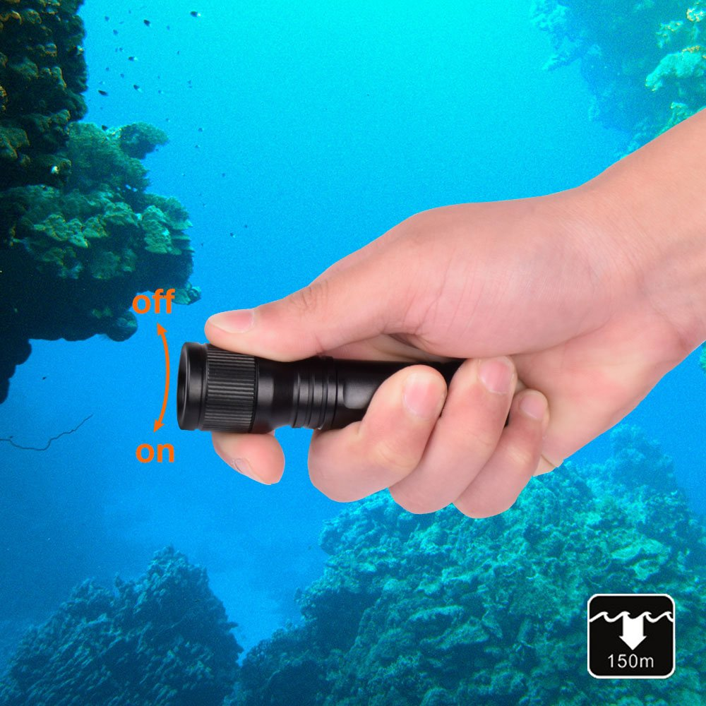 ORCATORCH Latest D560 Mini Scuba Dive Light 630 Lumens Rotary Switch Underwater Torch with 360 Degree Rotatable Mask Clip, Backup Batteries, Wrist Lanyard, O-Rings by ORCATORCH (Image #6)