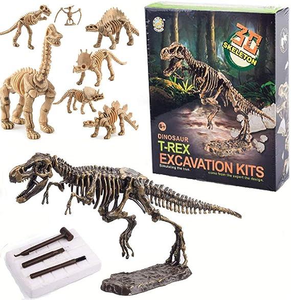 Amazon Com Dinosaur Fossil Dig Kit Excavate 13 Real Dinosaur Fossil Skeleton Gran Regalo De Ciencia Stem Para Paleontología Y Arqueología Entusiastas De Cualquier Edad Toys Games