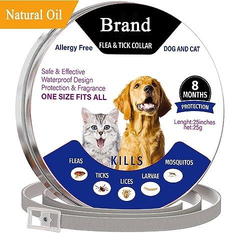 Flightbird Collares Antiparasitario para Perros y Gatos con Ingredientes naturales-25inches Collares Antipulgas y Garrapatas