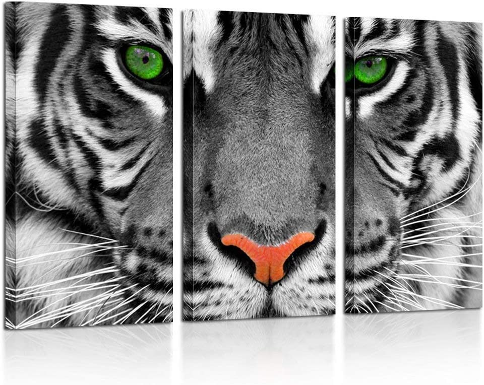 Kreative Arts Large 3 Pieces Canvas Prints Wall Art Green Eyed Tiger Poster Printed On Canvas Animal Pictures Painting Giclee Artwork Framed for Office Home Decorations 16x32inchx3pcs