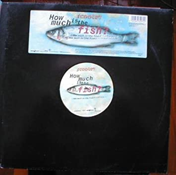 How Much Is The Fish?: Amazon co uk: Music