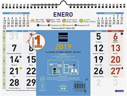 Finocam 781440019 - Calendario de pared 2019: Amazon.es: Oficina y ...