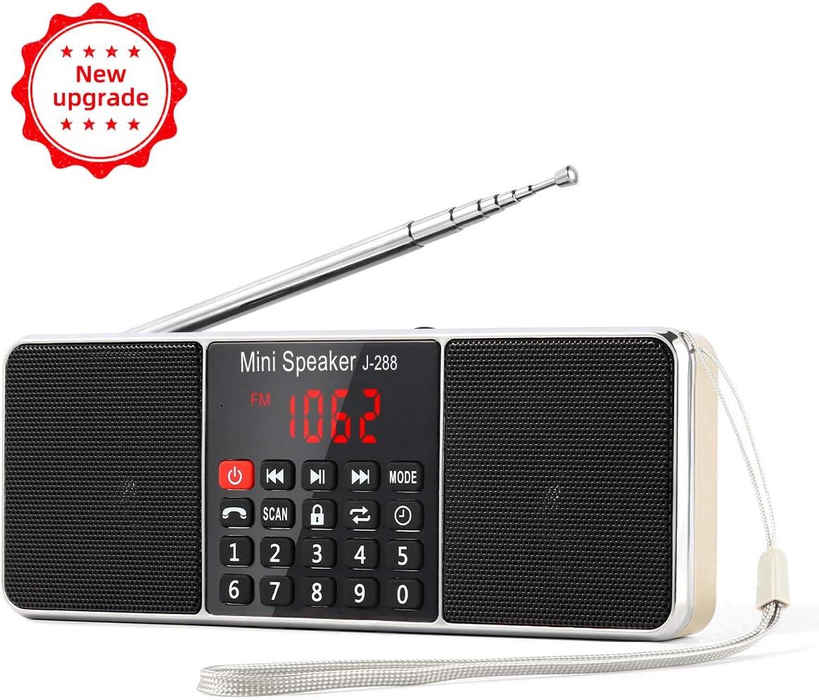 L-19 Radio portátil FM Am con Altavoz estéreo Bluetooth, Temporizador de  Apagado, estación de Bloqueo, Tarjeta USB y TF y Reproductor de MP19 AUX,  por