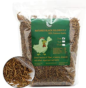 Black Soldier Fly Larvaeis,2LB 100% Natural Large Size No Moisture,Treats for Birds Chickens Hedgehog Hamster Fish Reptile Turtles