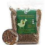 WAMSOFT Black Soldier Fly Larvaeis,2LB 100% Natural Large Size No Moisture,Treats for Birds Chickens Hedgehog Hamster Fish Re