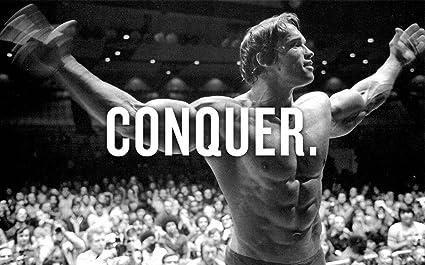 Arnold Schwarzenegger Poster 40 Inch X 24 21 13