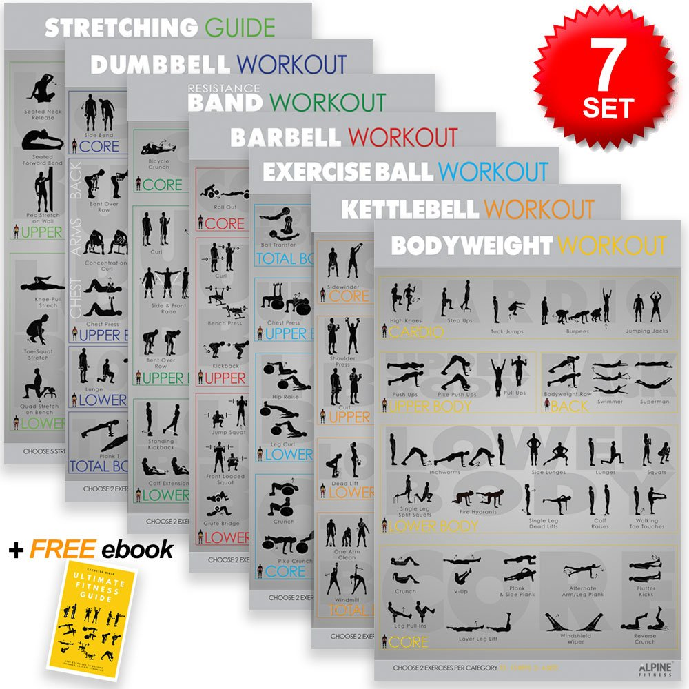 7 Exercise & Fitness Posters | Large Laminated Gym Planner Charts for Great Workouts - Guide to Build Strength (Stretch, Bodyweight, Ball, Dumbbell, Barbell, Band, Kettlebell) | Alpine Fitness