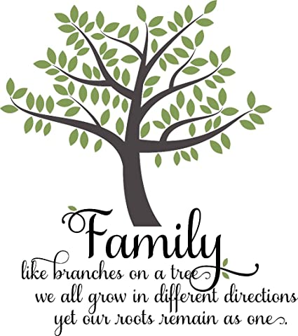 Wall Decal Sale Family Like Branches On A Tree We All Grow In