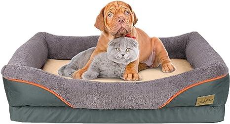 Colchoneta Suave y C/ómoda para Mascotas Peque/ñas Medianas BingoPaw Cama Perro con Coj/ín Desmontable 80 x 18 cm Beige Sof/á Perro Impermeable y Lavable