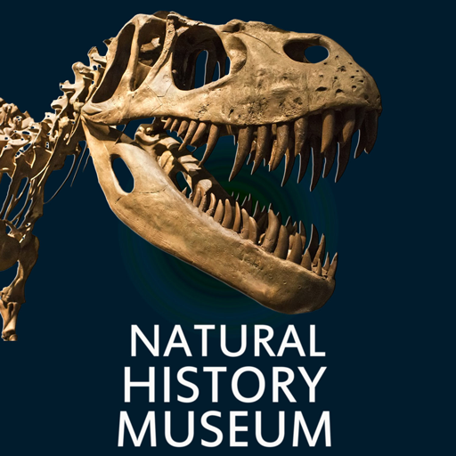 (Natural History Museum (intro) )