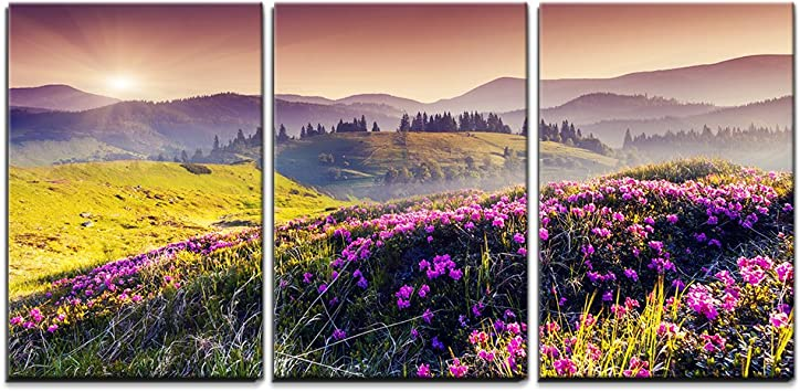Amazon Com Wall26 3 Piece Canvas Wall Art Magic Pink Rhododendron Flowers On Summer Mountain Modern Home Art Stretched And Framed Ready To Hang 16 X24 X3 Panels Posters Prints
