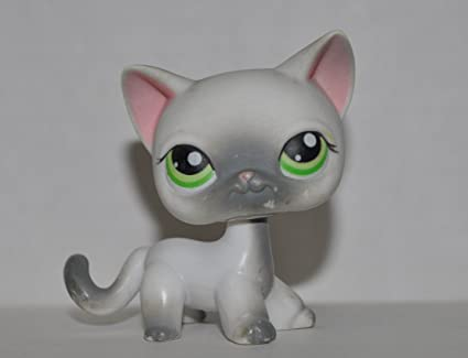 Amazon.com: Gato # 125 (4 patas: blanco, ojos verdes, gris ...
