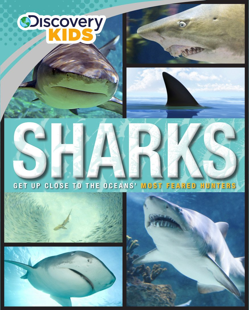 sharks discovery kids parragon books 9781472376763 amazon com