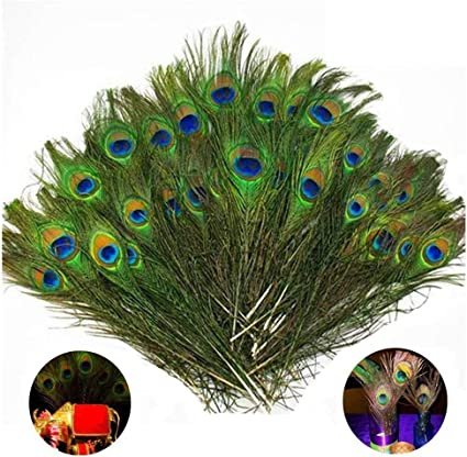 TinaWood Real Natural Peacock Eye Feathers 9.8-11.8 inch for DIY Craft Wedding Holiday Decoration 35