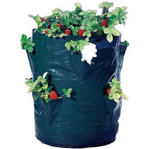 pflanz sack fr erdbeeren 45cm blumen balkon topf pflanzen kruter ampel tasche 8 loch - Blumen Im Topf Pflanzen
