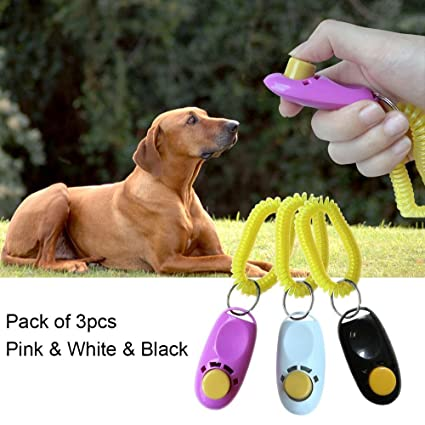 Buy Dog Training Clicker with Wrist Strip Pet Treat Training