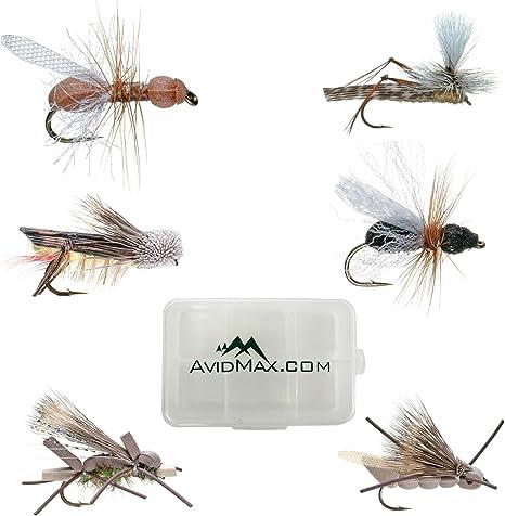 Umpqua terrestre trucha mosca pesca moscas selección – Surtido de 12 con caja para moscas de pesca: Amazon.es: Deportes y aire libre