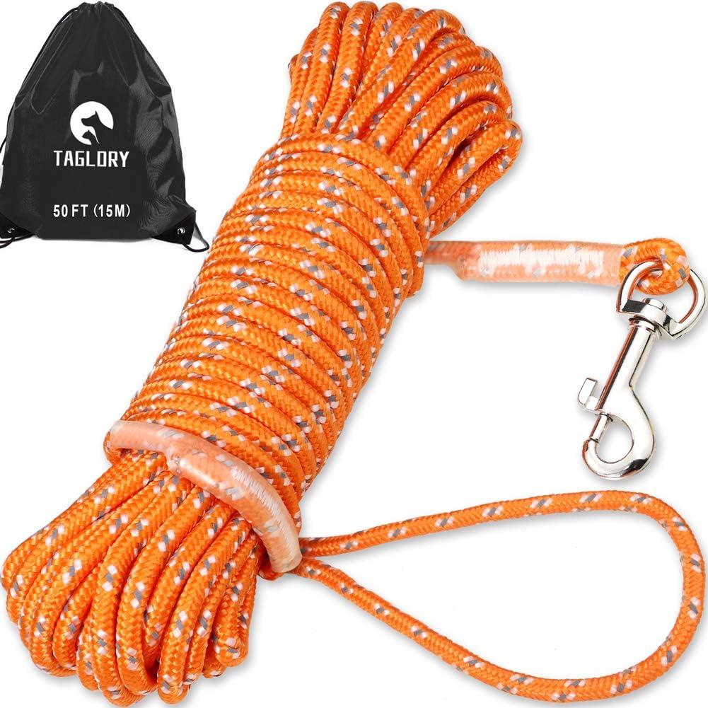 Taglory 15M Correa Adiestramiento Perro, Cuerda Nylon Correa Larga Perro para Perros Pequeños, Correa de Adiestramiento para Perros con Asa, Naranja