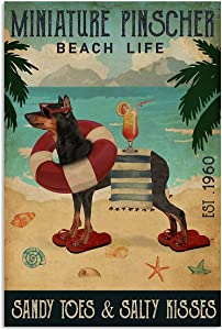 Vintage Beach Life Sandy Toes & Salty Kisses Miniature Pinscher Poster Wall Art Print Decor Office Bedroom Living Room 24x36 Inches