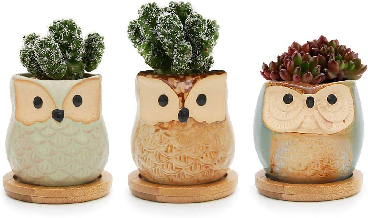 T4U 2.5 Inch Ceramic Succulent Planter Pots with Bamboo Saucers Mini Size, Cute Owl Bonsai Pots Home and Office Decoration Desktop Windowsill Gift, for Gardener on The Birthday Set of 3