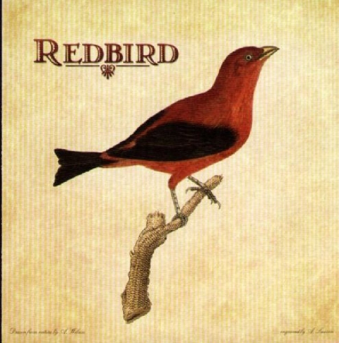 Redbird by Signature Sounds