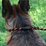 BRONZEDOG Rope Dog Leash 6ft Mountain Climbing