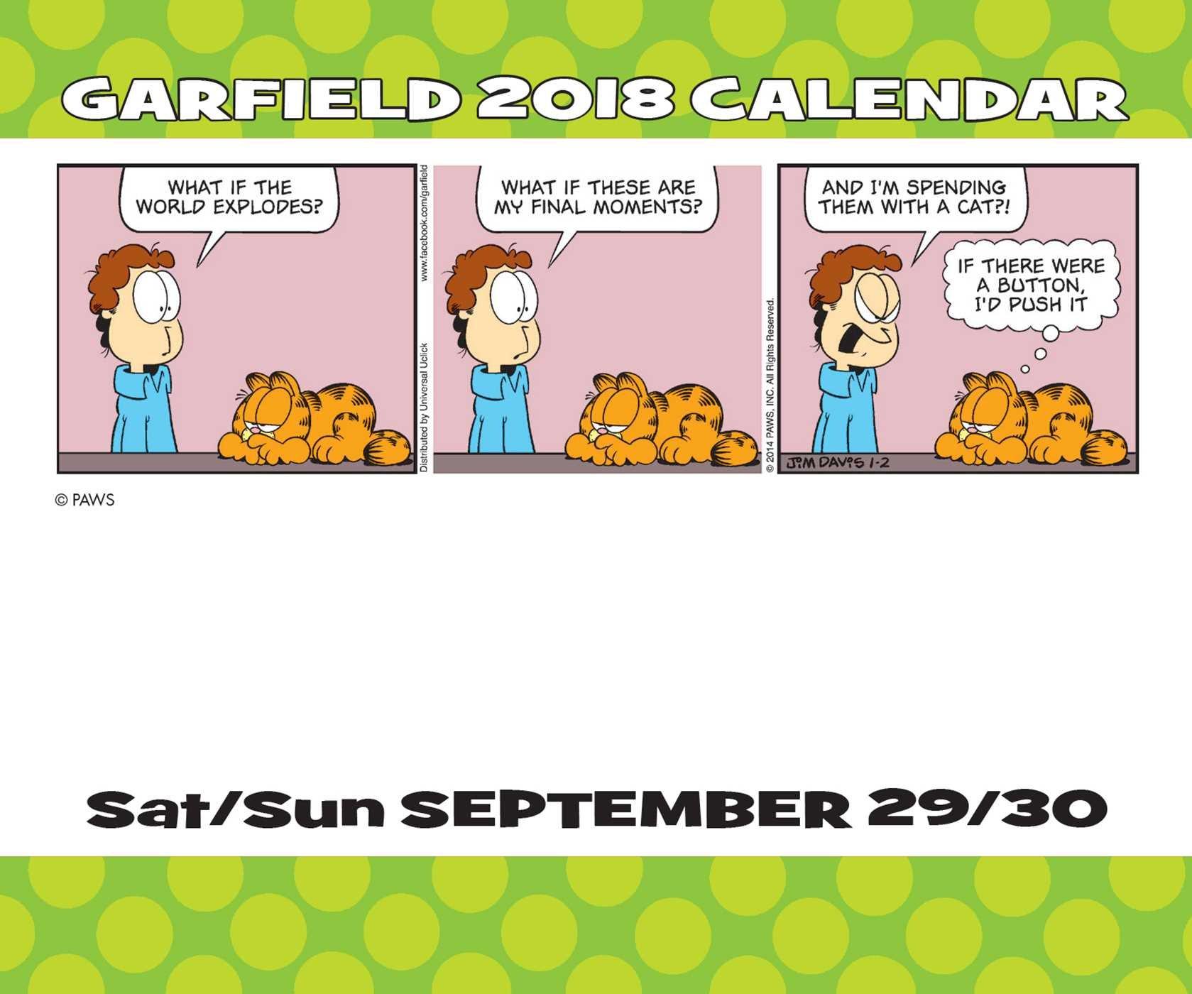 Galleon Garfield 2018 Day To Day Calendar