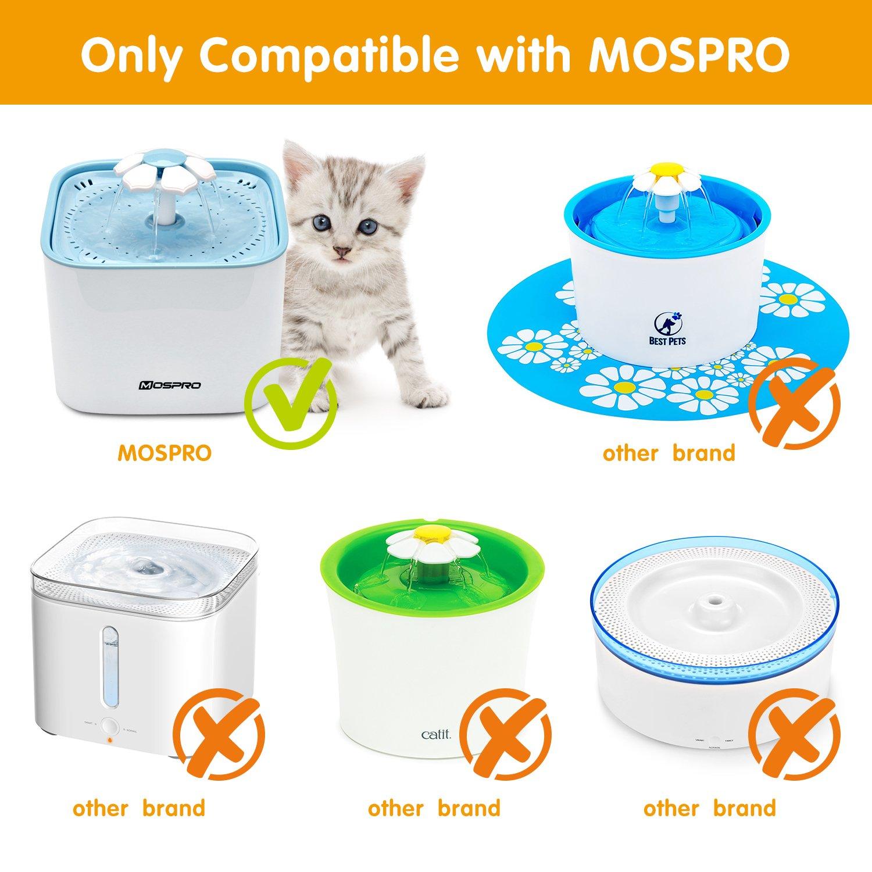 Amazon.com: Fuente para mascotas Gato dispensador de agua ...