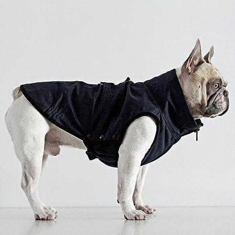 Dogissimo Windsor - Chaqueta para Bulldogs franceses Azul Azul Marino Small