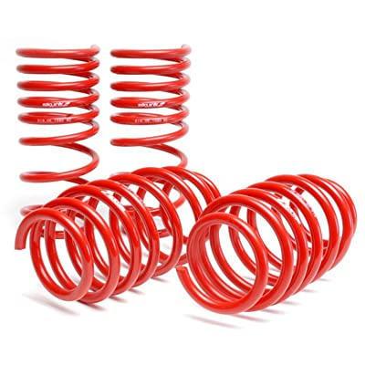 Skunk2 519-05-1580 Lowering Spring for Honda Civic: Automotive