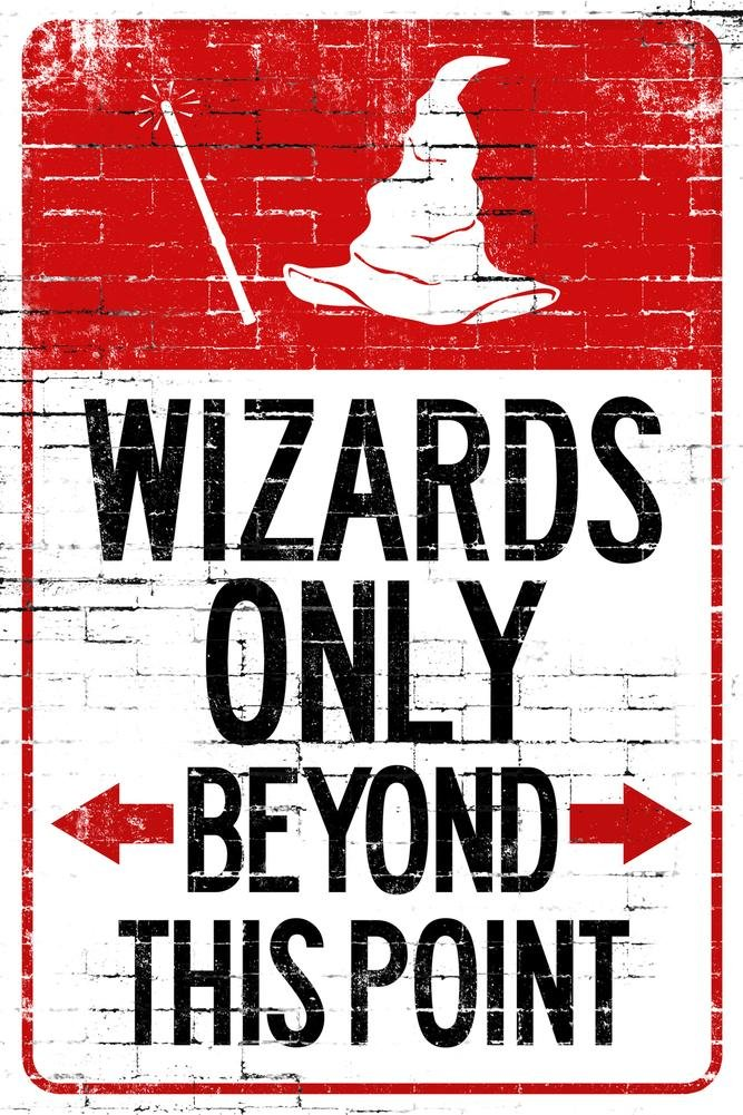 Wizards Only Beyond This Point Indoor/Outdoor Plastic Sign