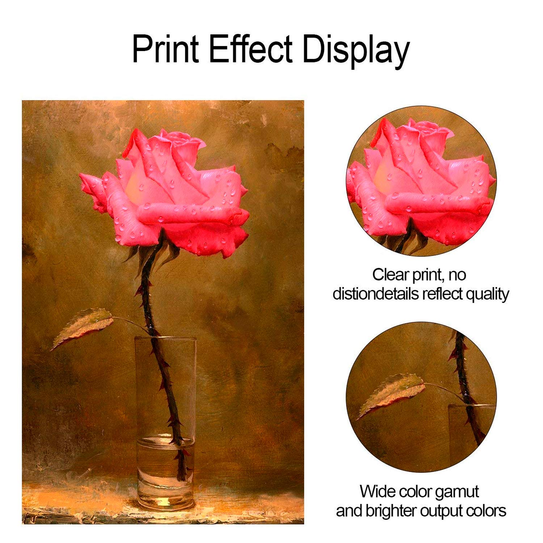 ProDot All Inkjet Printers Ink 100 ml Multicolor Set Of 4 (Cyan ...