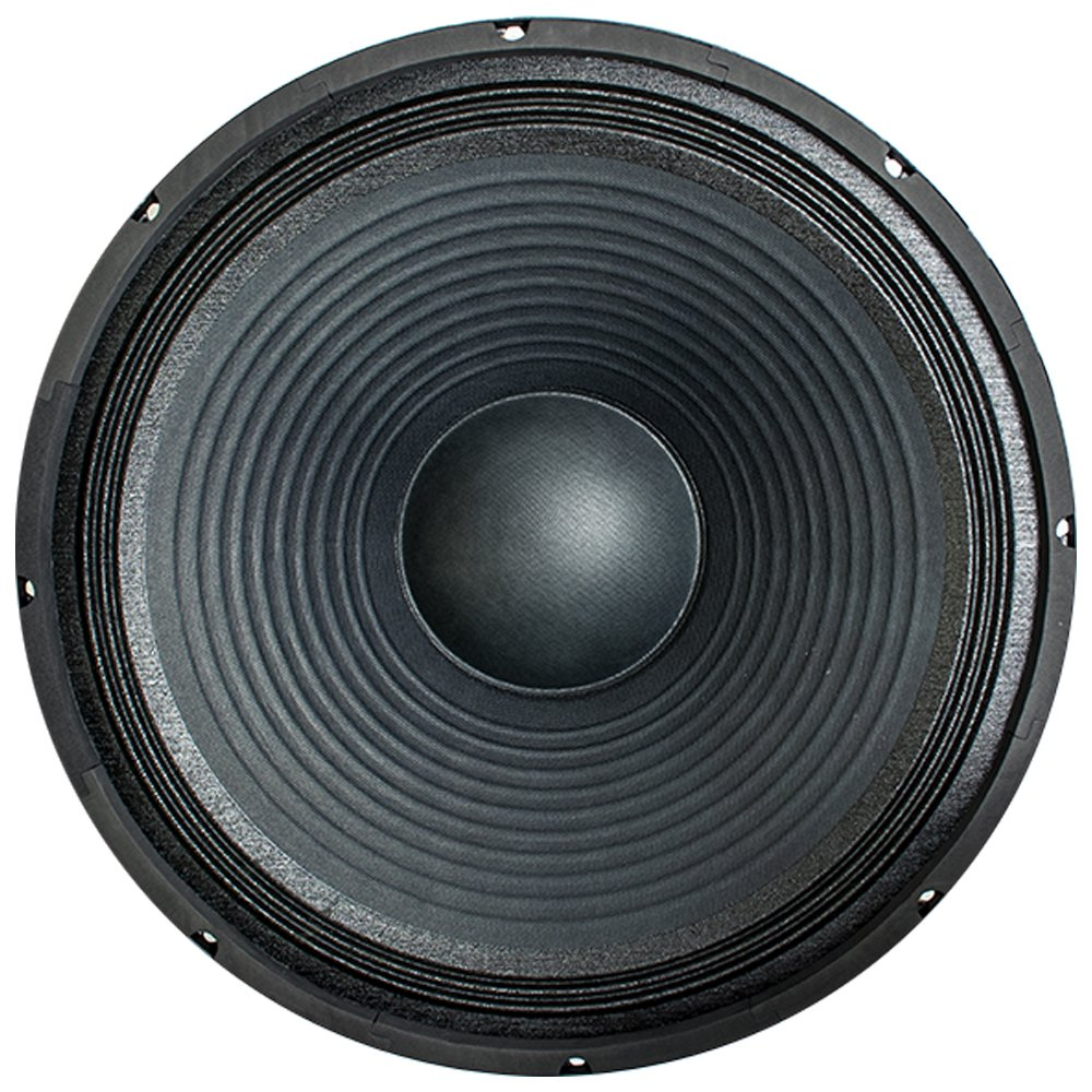 Seismic Audio - 18'' Raw Subwoofer/Woofer/Speaker - PA DJ Pro Audio Replacement