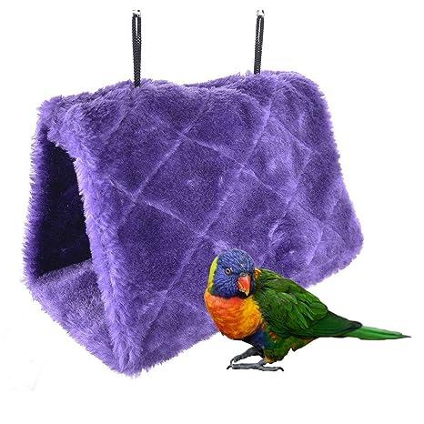 Bello Luna Nido de loro púrpura anidar pájaro mascota nido de ...