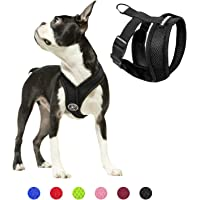 Gooby Comfort X Head In Harness - Black, X-Large - No Pull Small Dog Harness, Patented Choke-Free X Frame - Perfect on…