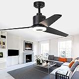 Indoor Ceiling Fan Light Fixtures - FINXIN