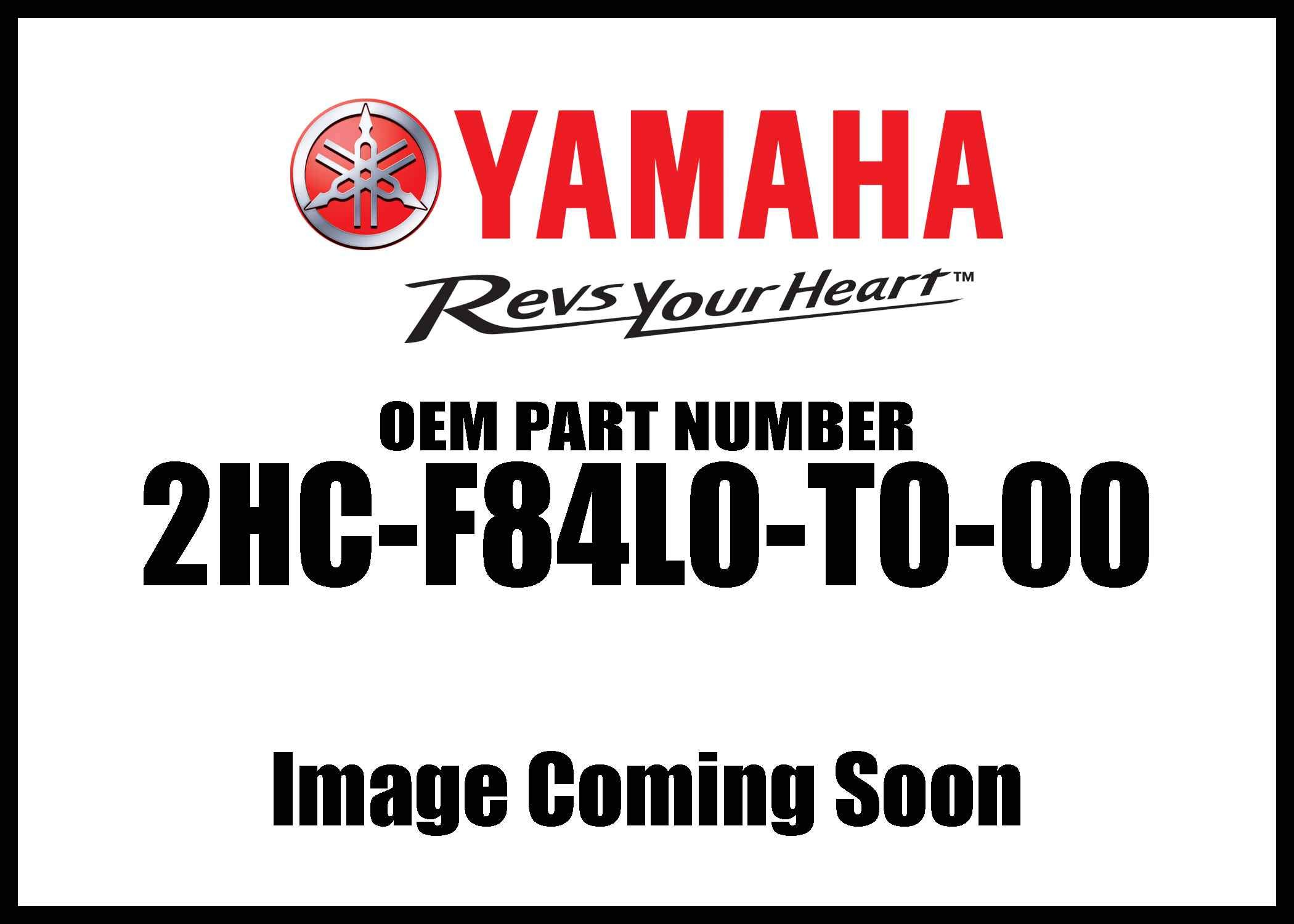 YAMAHA 2HC-F84L0-T0-00 Desert Front Grab Bar with Winch Plate