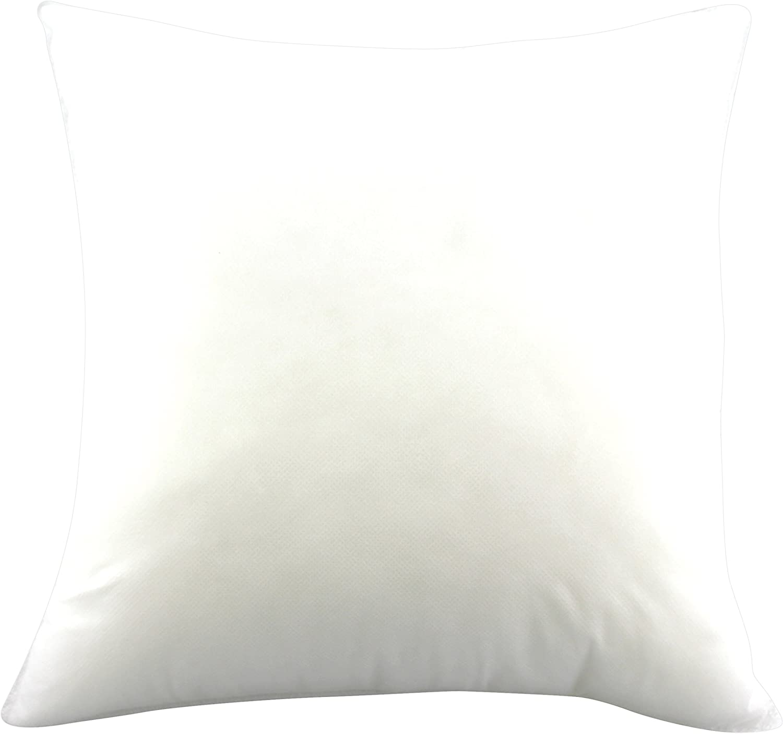 Pillows Pillow Forms Cushion Insert