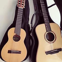 DAddario PW-SH-01 - Tapa para guitarras acústicas: Amazon.es ...