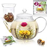 Teabloom Stovetop & Microwave Safe Glass Teapot (40 OZ / 1200 ML) with Removable Loose Tea Glass Infuser – Includes 2 Blooming Teas – Premium Quality Teapot Gift Set (Holds 4-5 Cups)