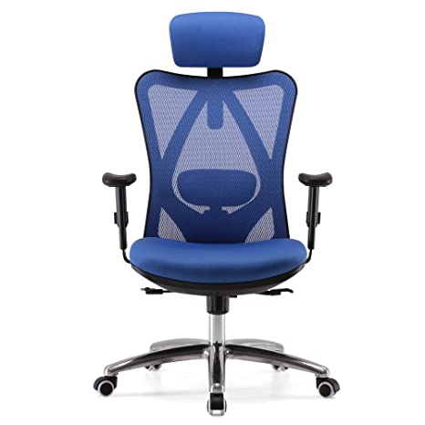 Amazing Sihoo Ergonomic Office Chair Computer Desk Chair Adjustable Headrest Backrest And Armrests Lower Back Support Mesh Blue Evergreenethics Interior Chair Design Evergreenethicsorg