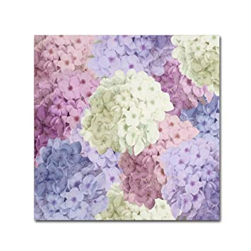 Amazoncom Hortensia Groundless Warm Tones By Color Bakery 18x18 - Color-hortensia